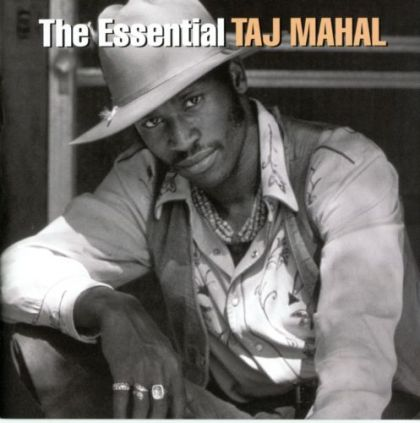 Image for The Essential Taj Mahal