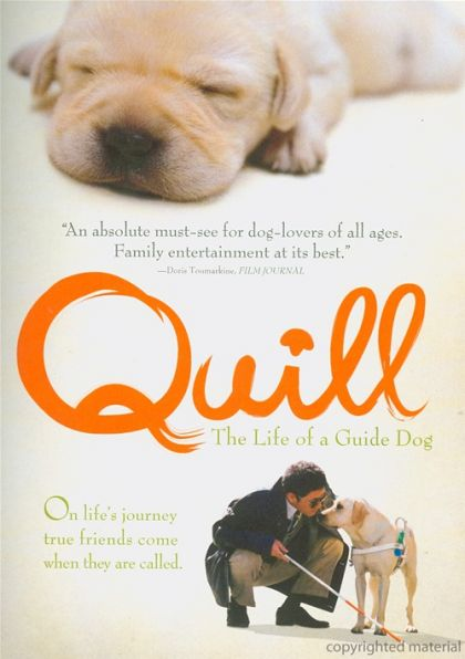 Image for Quill